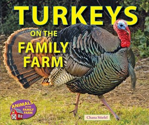 Picture of Turkeys on the Family Farm: