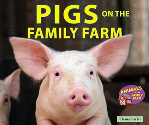 Picture of Pigs on the Family Farm
