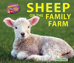 Picture of Sheep on the Family Farm: