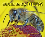 "<h2><a href=""http://www.enslow.com/books/Zoom_In_on_Bees/4063"">Zoom In on Bees</a></h2>"