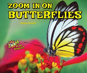 Picture of Zoom In on Butterflies: