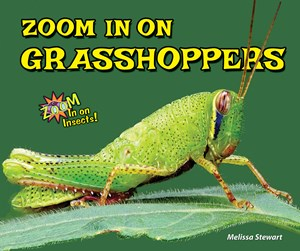 Picture of Zoom In on Grasshoppers: