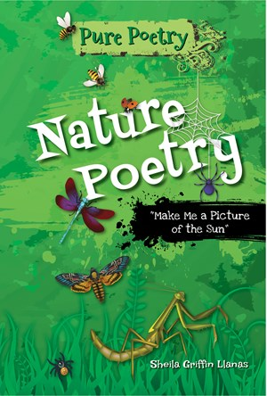 "Picture of Nature Poetry: ""Make Me a Picture of the Sun"""