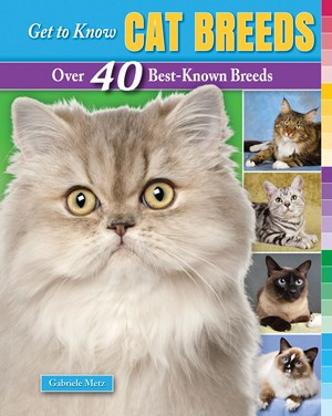 Picture of Get to Know Cat Breeds: Over 40 Best-Known Breeds