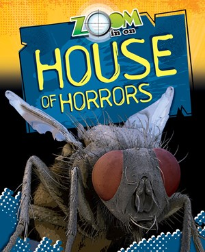 Picture of Zoom in on House of Horrors: