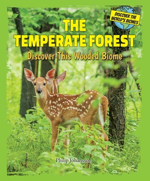 Picture of The Temperate Forest: Discover This Wooded Biome