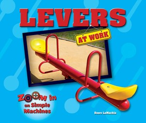 Picture of Levers at Work