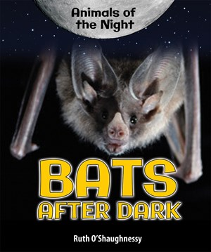 Picture of Bats After Dark