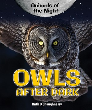 Picture of Owls After Dark