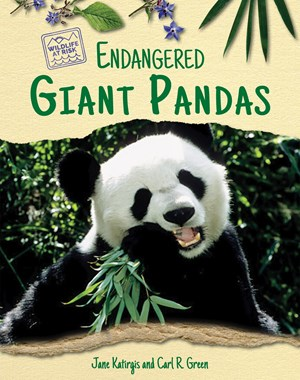 Picture of Endangered Giant Pandas