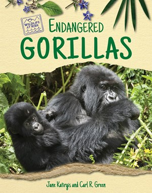 Picture of Endangered Gorillas