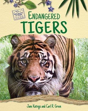 Picture of Endangered Tigers
