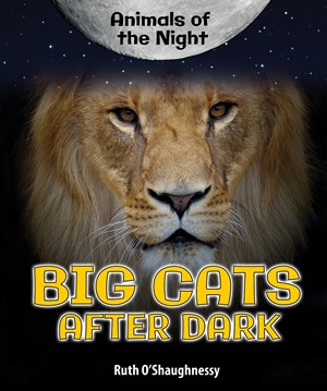 Picture of Big Cats After Dark
