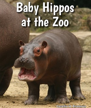 Picture of Baby Hippos at the Zoo: