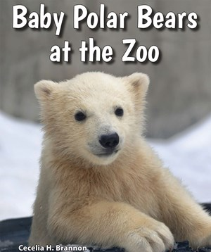 Picture of Baby Polar Bears at the Zoo: