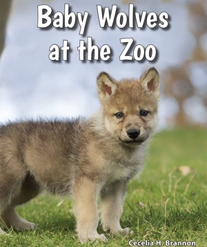 Picture of Baby Wolves at the Zoo: