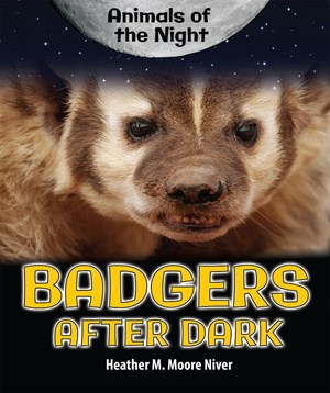Picture of Badgers After Dark: