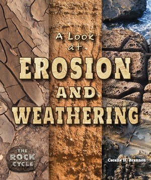 Picture of A Look at Erosion and Weathering:
