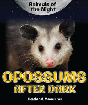 Picture of Opossums After Dark: