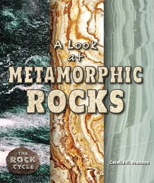 Picture of A Look at Metamorphic Rocks: