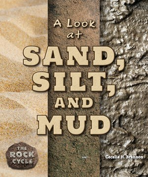 Picture of A Look at Sand, Silt, and Mud:
