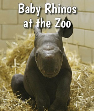 Picture of Baby Rhinos at the Zoo: