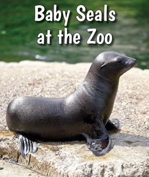 Picture of Baby Seals at the Zoo: