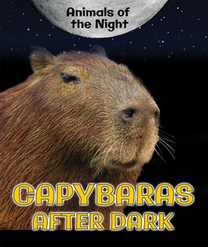Picture of Capybaras After Dark: