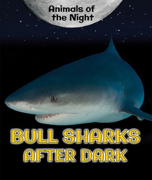 Picture of Bull Sharks After Dark: