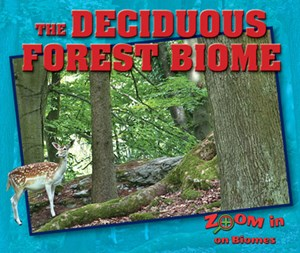 Picture of The Deciduous Forest Biome: