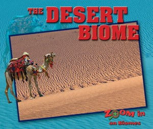 Picture of The Desert Biome: