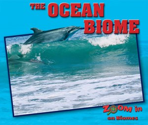 Picture of The Ocean Biome: