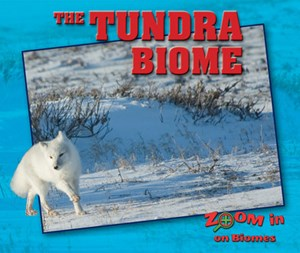 Picture of The Tundra Biome: