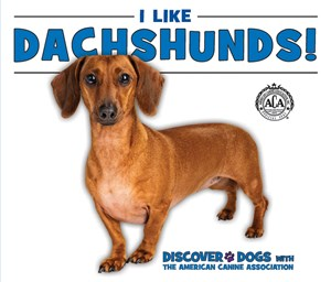 Picture of I Like Dachshunds!: