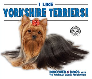 Picture of I Like Yorkshire Terriers!: