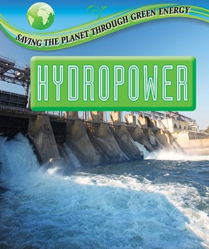 Picture of Hydropower: