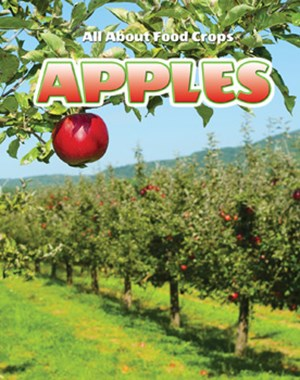 Picture of Apples: