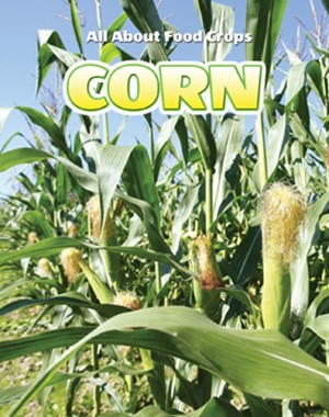 Picture of Corn: