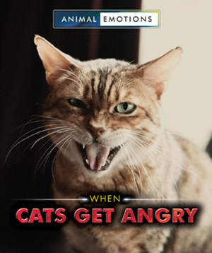Picture of When Cats Get Angry: