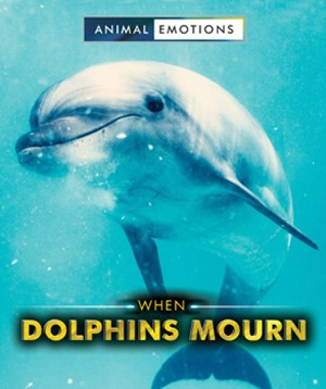 Picture of When Dolphins Mourn: