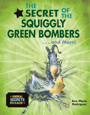 Picture of The Secret of the Squiggly Green Bombers... and More!: