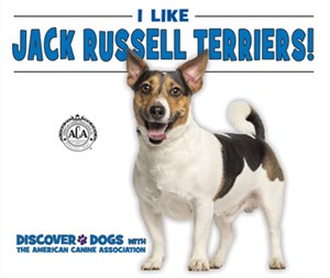 Picture of I Like Jack Russell Terriers!: