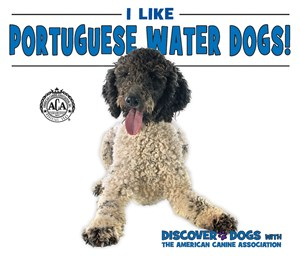 Picture of I Like Portuguese Water Dogs!: