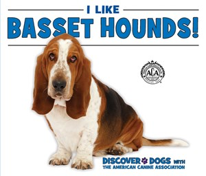 Picture of I Like Basset Hounds!: