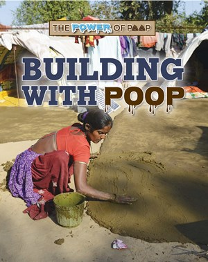 Picture of Building with Poop: