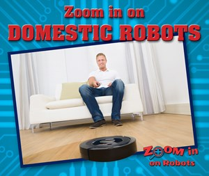 Picture of Zoom in on Domestic Robots: