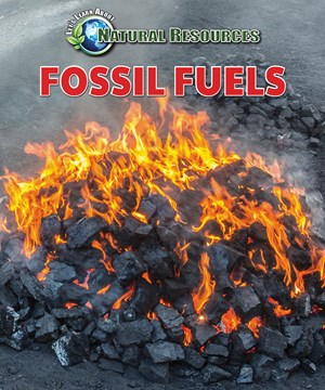 Picture of Fossil Fuels:
