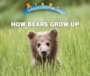 Picture of How Bears Grow Up:
