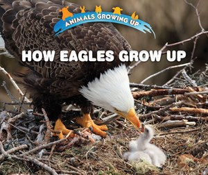 Picture of How Eagles Grow Up: