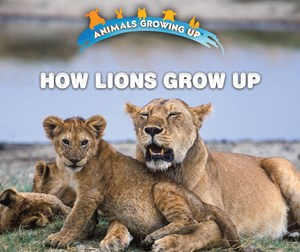 Picture of How Lions Grow Up: